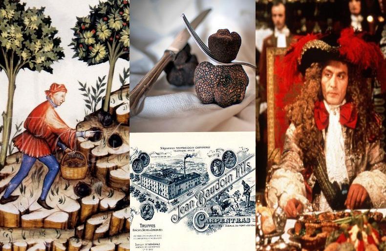 Die Geschichte der Trüffel hat viele Höhen und Tiefen und ist voll von spannenden Legenden, kuriosen Ritualen, Spekulationen………