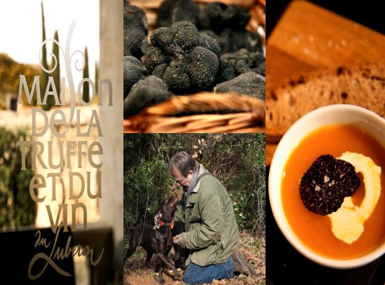 Ob leidenschaftliche Trüffelsucher, Gourmets oder Naturliebhaber, die geheimnisvollen Edelpilze faszinieren die Menschen......